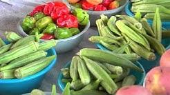 Lean & Green - The Heart Healthy Diet