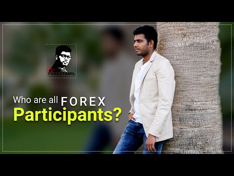 who-are-all-forex-market-participants?