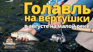 Голавль в августе на малой реке. Ловля на вертушки!