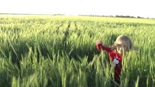 Farmer's Daughter PSY   Gentleman Parody