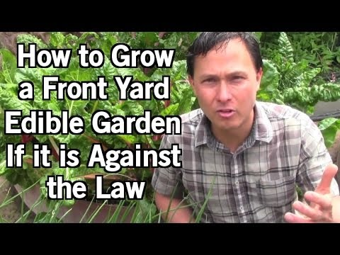 How to Grow Food in Your Front Yard if it is Illegal