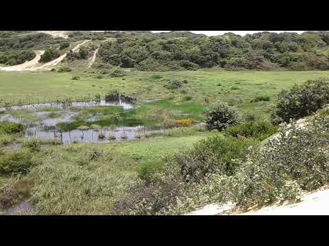 Lagoa do tracoá Beberibe tá pegando um pouco da água