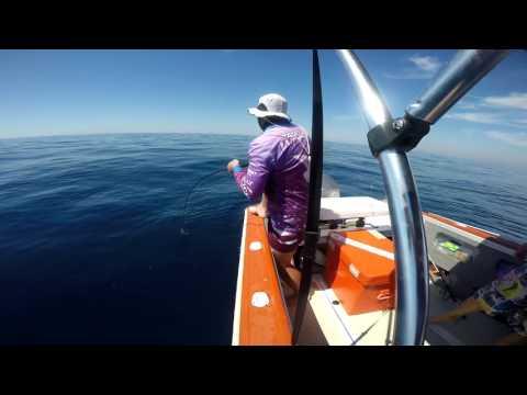 Offshore Bundaberg On Outsider