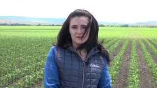 Успешно земеделие - броят от 19. 06. 2020