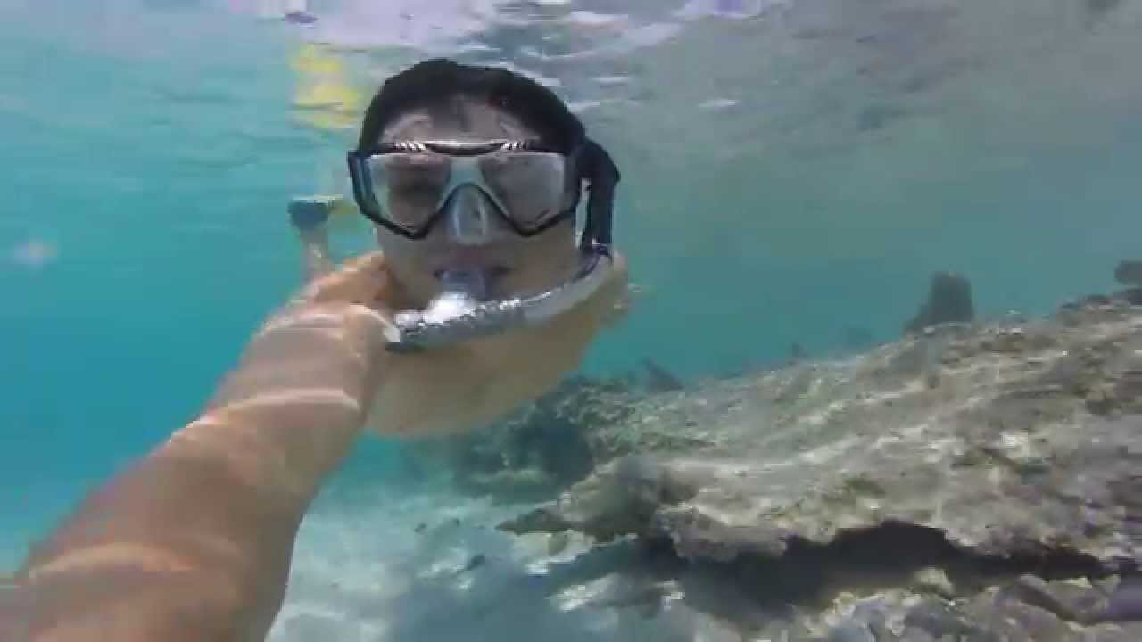 Snorkeling At Caneel Bay S Scott Beach In St John Usvi