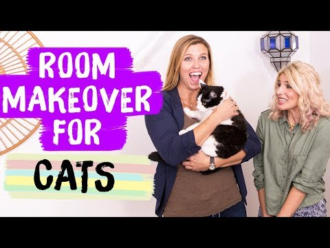 Cat Room Makeover! | Mr. Kate Decorates