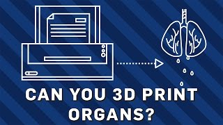 Can You 3D Print Organs? | Brit Lab