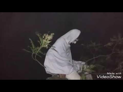 বাংলা আহাট ভুত 4 Banla Ahat Horror 4