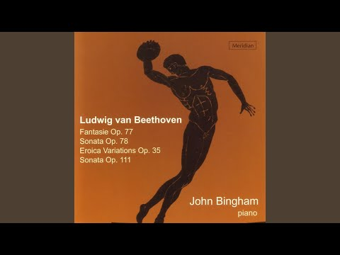 Piano Sonata No.32 in C Minor, Op. 111: I. Maestoso - Allegro con brio ed appassionato