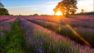 Eternal Hope - Kevin MacLeod (Beautiful Piano Sound)