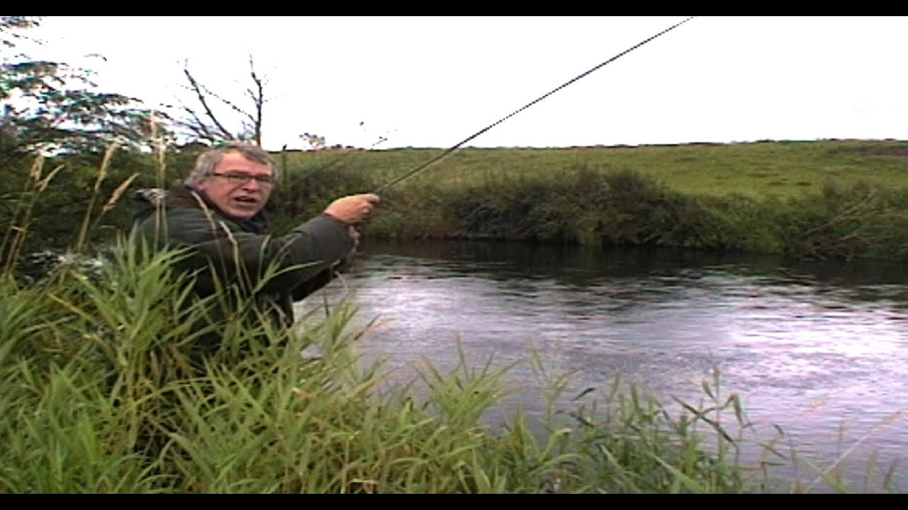 59 Brown Trout Rivers: Where to fish in Ireland