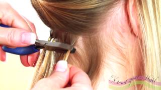 Microring Extensions Anleitung von Xtend-your-Hair