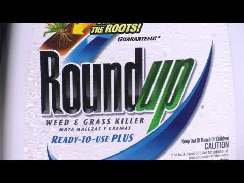 RoundUp Weed And Grass Killer Ready-To-Use Plus