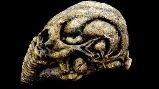 Prometheus Alien Space Jockey 1/1 scale Bio-Helmet Decayed Version