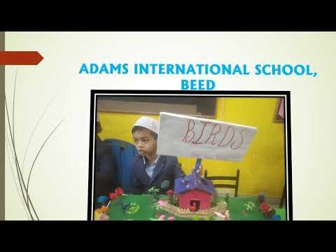 ADAMS INTERNATIONAL SCHOOL, BEED Grade- I SCIENCE EXHIBITION