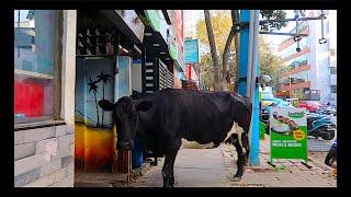 KORAMANGALA:  How CHEAP is Bangalore?   Budget Backpacking Bengaluru India