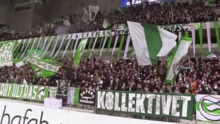 Hammarby ultras!