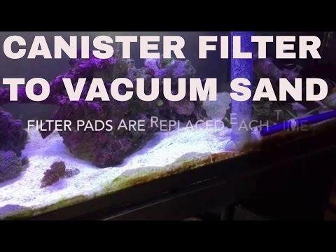 Saltwater Aquarium Sand Bed: Sand Bed Vacuum Technique Using Canister Filter