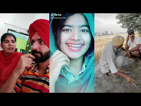 Best Punjabi Viral Full Comedy Tiktok Videos 2020 / Punjabi Funny Tiktok Videos!