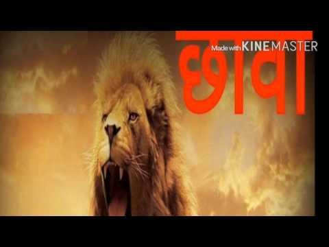 MP BOYES MOUJE SANGAON (chava group)VIDEO DJ SONGS