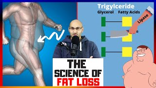 The Science of Fąt Loss Explained