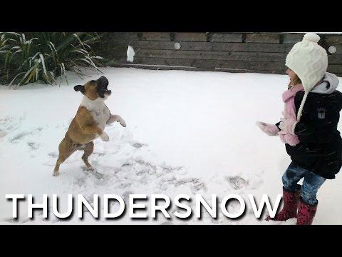 2010-11-28 'Thundersnow'