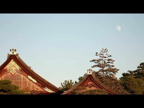 Kyoto Imperial Palace - 京都御所