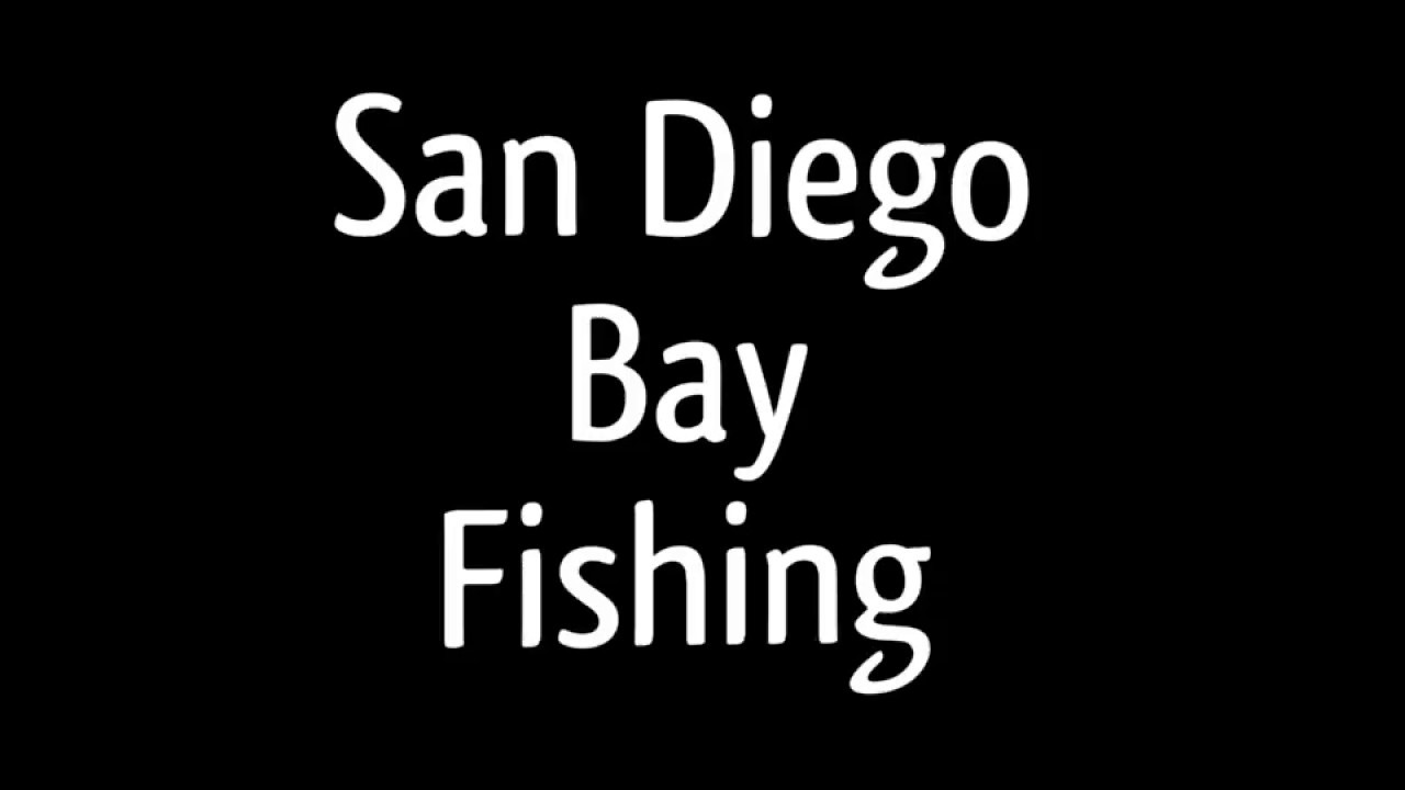 San diego bay fishing youtube for Fish count san diego