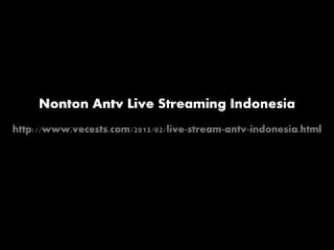 Antv Live Stream Indonesia
