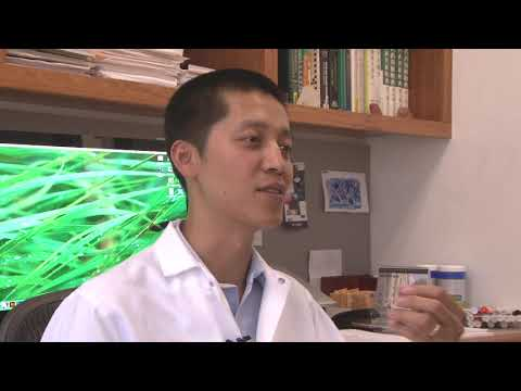 The Science Behind Traditional Chinese Medicine