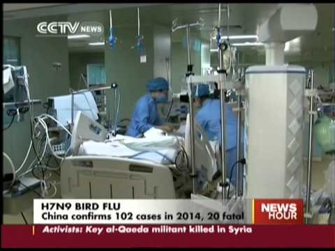 China reports 6 new cases of H7N9, some in critical condition