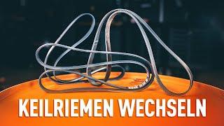Installation Rippenriemen : Video-Handbuch