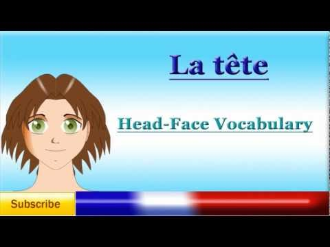 French Lesson 40 - Learn French Body Parts Vocabulary -  Head and Face - partes del cuerpo frances