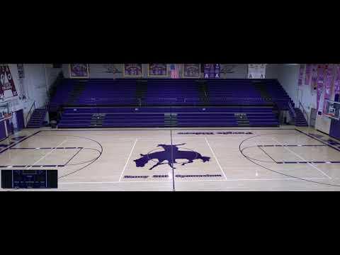 Arcola High School vs. Chrisman High School Varsity Womens' Volleyball