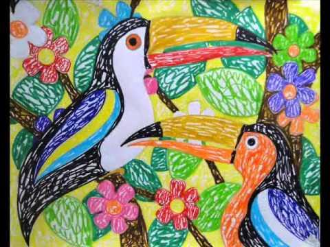araras e tucanos