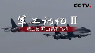 《军工记忆Ⅱ》第五集 歼11系列飞机   CCTV纪录 - YouTube