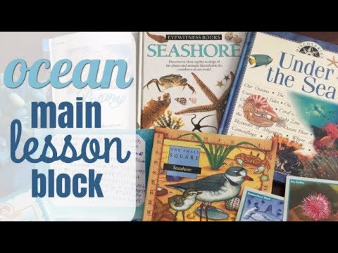 HOW TO DO AN OCEAN UNIT STUDY