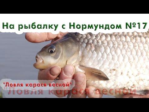 рыбалка с нормундом грабовскисом весной