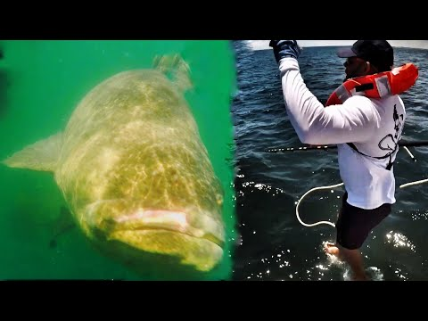 Hard To Believe This Fishing? Crazy Man Fights Big Fish In A Life Jacket