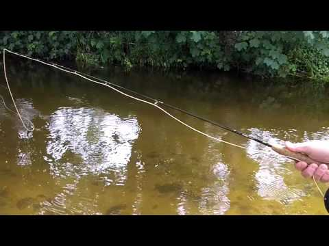Dartmoor Rivers: Spotting Sea Trout On The River Yealm