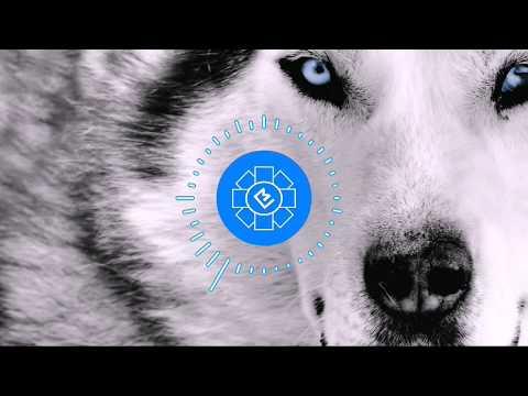 Yalnız Canavar (EN: Alone Wolf)