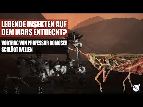 Lebende Insekten Auf Dem Mars Entdeckt? - Vortrag Von Professor Romoser Schlägt Wellen
