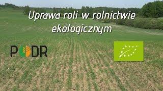 Uprawa roli w rolnictwie ekologicznym