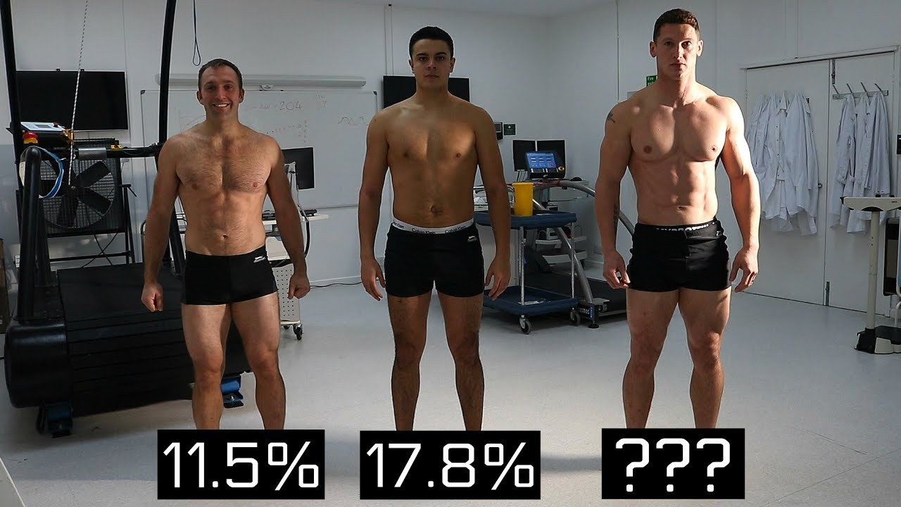 Is your ab workout making you fat? Dimitar hristov lifestyle.
