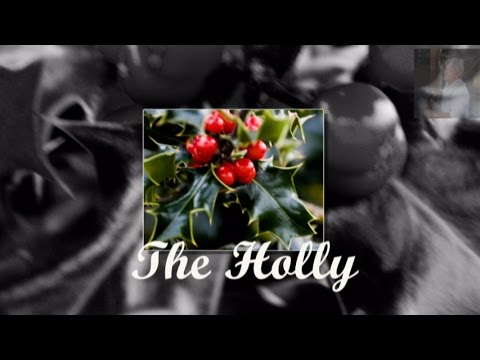 'THE HOLLY'-WELSH CHRISTMAS SONG-Instrumental - Tom Roush