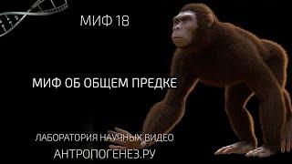 Миф об общем предке. Мифы об эволюции человека.