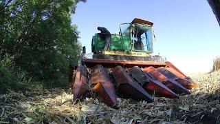 2 День уборки кукурузы, сезон 2015. ДОН-1500Б + КМД-6, ГАЗ-3307.