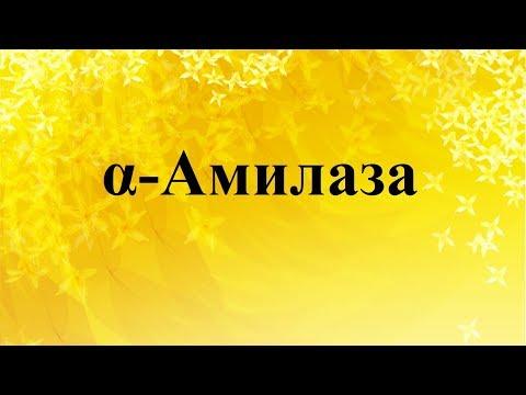 α - Амилаза крови