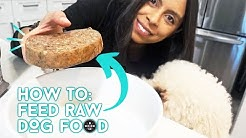 RAW Food Diet for Dogs! // EASY Tips // KETO DOG FOOD