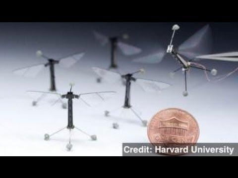 Harvard Engineers Build Flying Robot 'Bee'